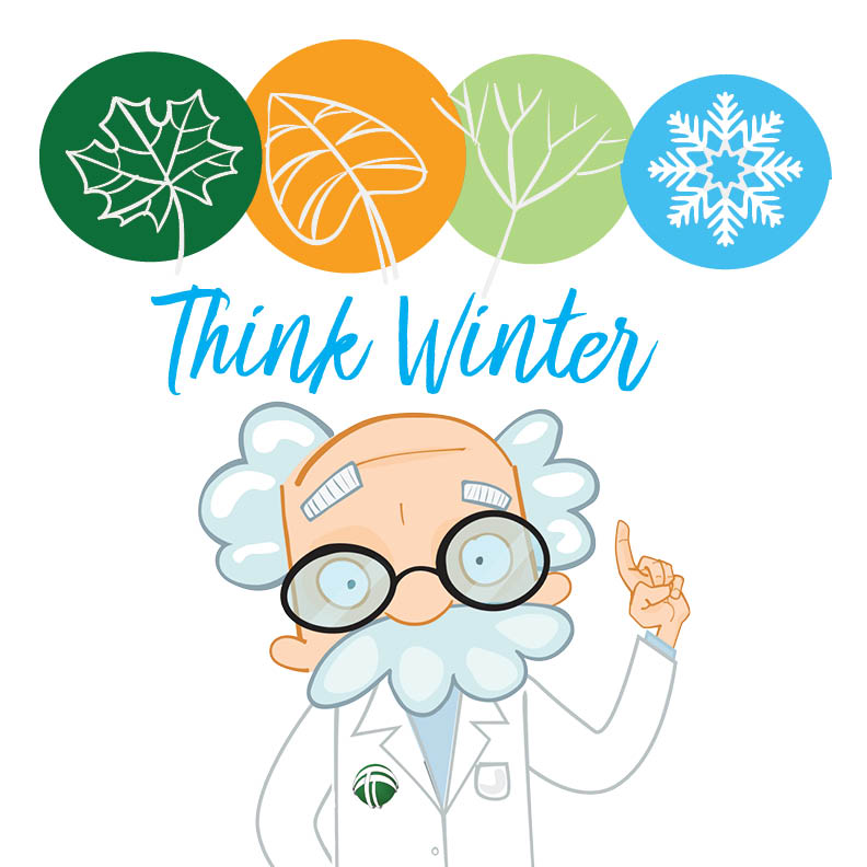 Think Winter
