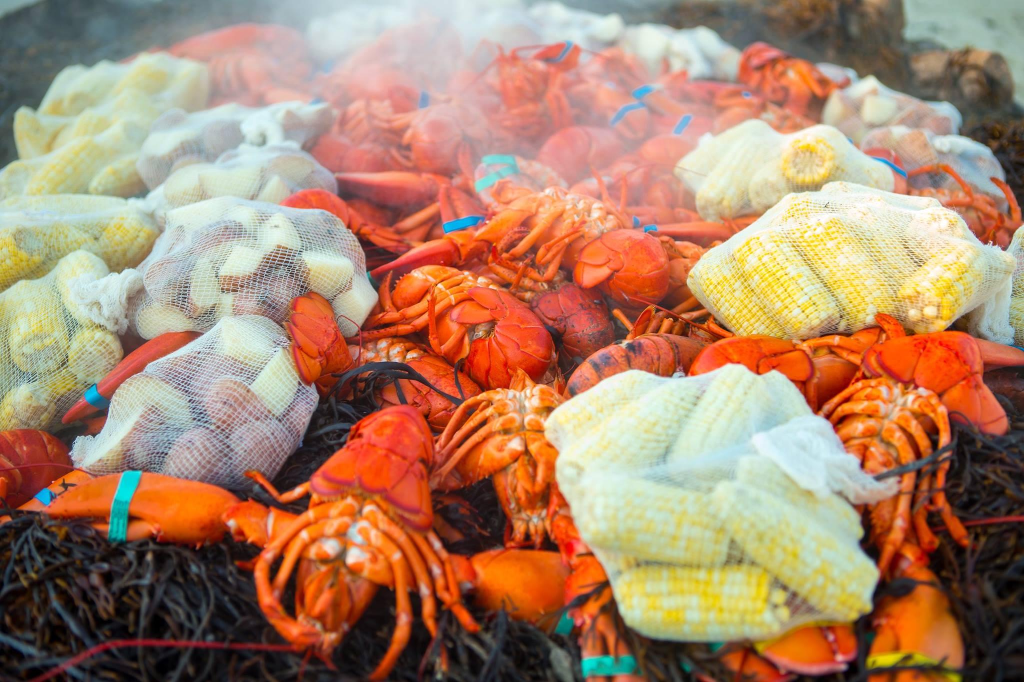 Fresh-Lobster-Steamers-Corn on the cob-potatoes