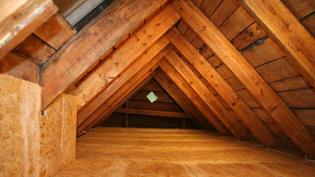 Attic Image for Attic Ventilation Category